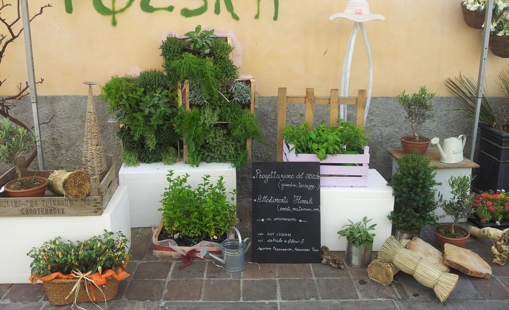 Salotti Allaperto : Emozioni in fiore evento salotti all aperto 2012 2013 cormano